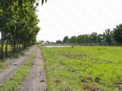 ขายที่ดิน 11ไร่ 106ตารางวา ดินเป็นบ่อเลี้ยงปลา ทับยาว ลาดกระบัง เจียระดับ กรุงเทพ