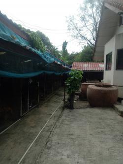 ขาย บ้านพร้อมที่ดิน 544 ตรว ที่ดินแปลงสวย ติดริมน้ำ ซอยพระแม่มหาการุณย์ 25 ถนนติวานนท์ ที่ว่างเยอะ เหมาะอยู่อาศัย ทำโกดัง บริษัท ถนนหน้ากว้าง