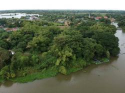 ขายที่ดินริมแม่น้ำลพบุรี ป่าสัก 10-2-97.8 ไร่ ต.สวนพริก อ.พระนครศรีอยุธยา จ.พระนครศรีอยุธยา