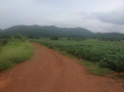 ขาย ที่ดิน อำเภอ หนองม่วง จังหวัด ลพบุรี จำนวน 832 ไร่ ที่ดินติดต่อกันเป็นผืนเดียวกัน