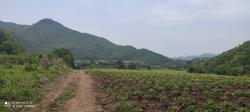 ขายที่ดินพร้อมบ้าน บนเนินสวยมาก ฮวงจุ้ยดีสุดๆ เหมาะแก่การทำรีสอร์ท ในกาญจนบุรี