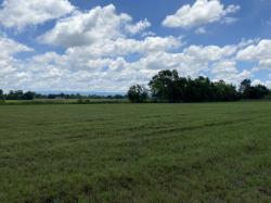 ขายด่วน ที่ดินแบ่งขาย สวยมาก ปราจีนบุรี