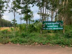 ขายสวนผลไม้จันทบุรี แปลงใหญ่  เป็นเนินทรัพย์ อากาศถ่ายเท มีน้ำไหลน้ำใช้ ราคา 45 ล้านบาท รวมโอน พื้นที่ 49 ไร่ 14 ตรว. โฉนดพร้อมโอน ไม่มีภาระผูกพันธ์