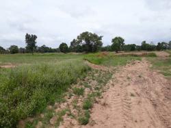 ขายที่ดิน 5 ไร่ ตำบล สาวะถี อ.เมือง จ.ขอนแก่น เหมาะทำสวนทำไร่ หรือ ขายหน้าดิน โทร 0640494652