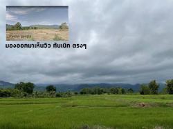 ขายที่ดินเพชรบูรณ์ อำเภอหล่มเก่า ติดถนน มองเห็นวิว ภูเขา หันหน้าเข้าภูทับเบิก เป็นสวนปาล์มและสวนแก้วมังกร โทร 081-5338775
