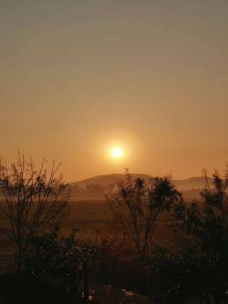 ขายโครงการโคก หนอง นา โมเดลพร้อมสวนและอุปกรณ์ทำการเกษตร เชียงราย