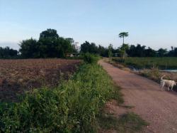 ขาย ที่ดินเปล่า มี 3 แปลง ติดถนนบ้านกุดตูม อำเภอจัตุรัส ชัยภูมิ
