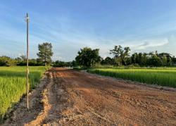 ที่ดินแบ่งขาย ทำเลดีราคาถูก ในอำเภอเมืองสกลนคร